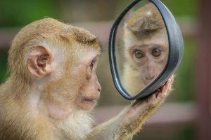 tükör önbecsülés